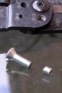 Cut bolt