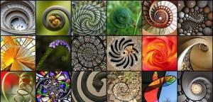 the spiral of presonal beleifs