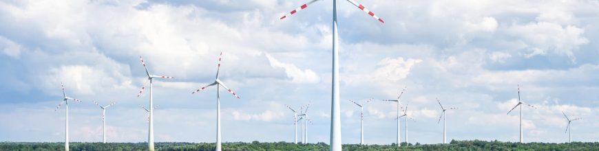 EDF breaks expectations as renewable energies hit: 🌍 💡 📰
