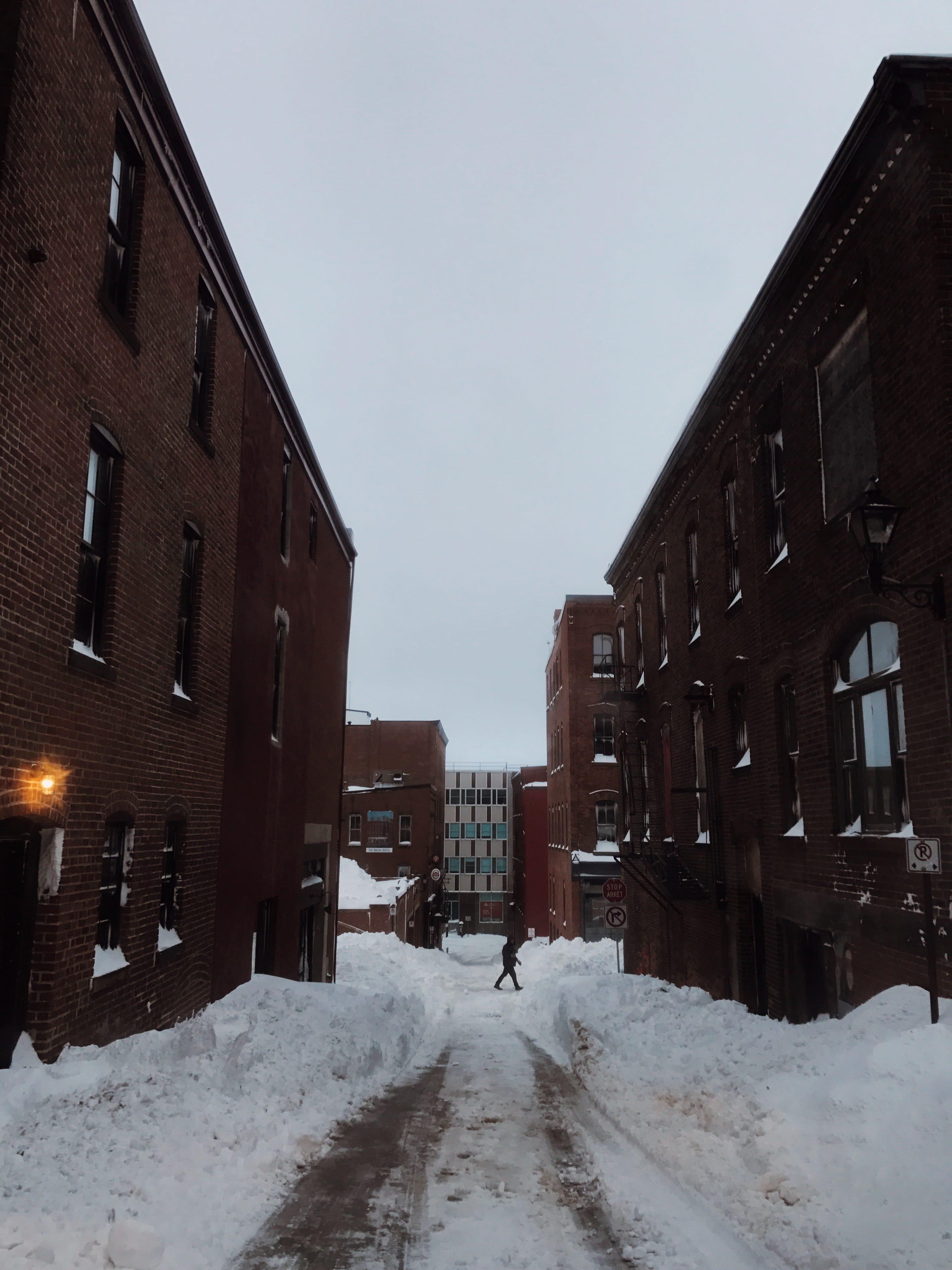 A photograph depicting Looking Down a Snowy Grannan Lane
