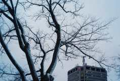 Bell Aliant Building from Kings Square During Winter Photograph