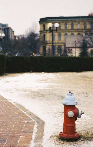Fire Hydrant Bottom of King Street Shot on Kodak Gold Photograph