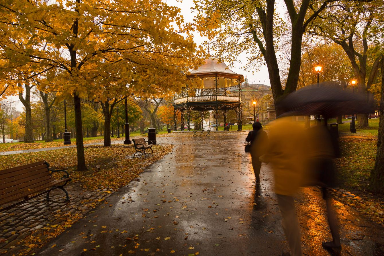 Click thumbnail to see details about photo - Kings Square in Fall Saint John Photograph
