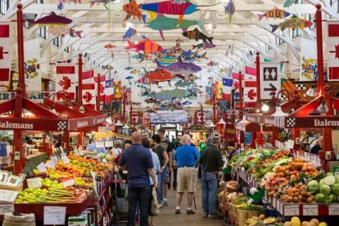 A photo of Saint John City Market Overhead Fish Photograph