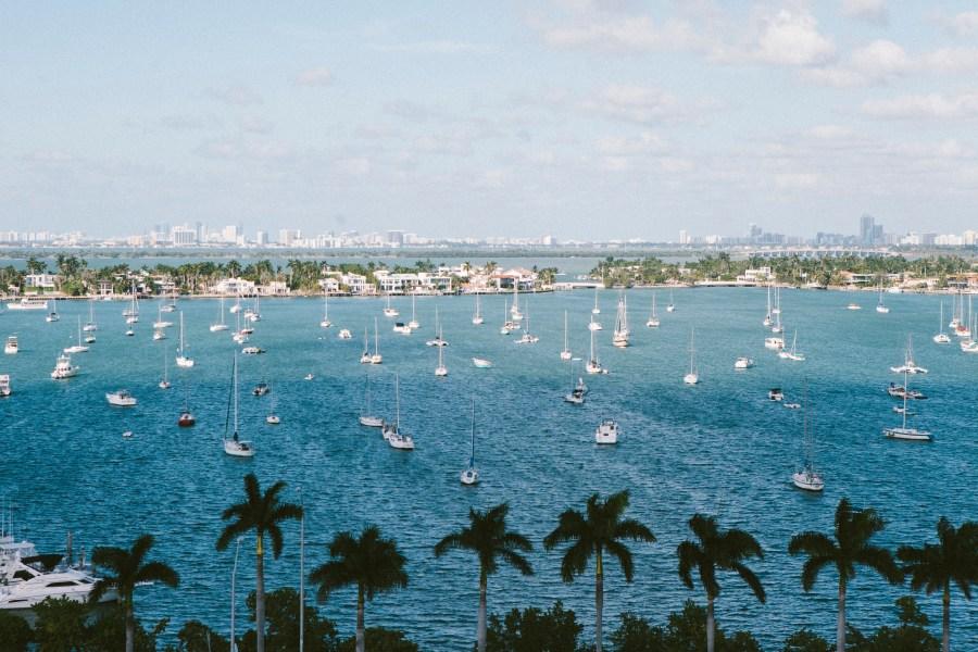 Free stock photos of Florida