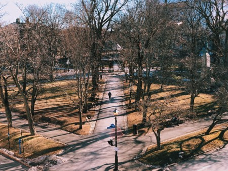A photo of Looking Down Kings Square Saint John