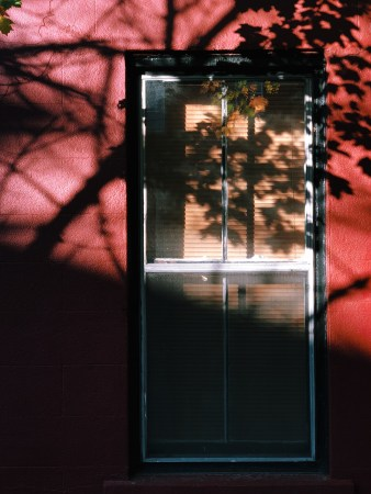 A photo of Window In Shadows Germain Street