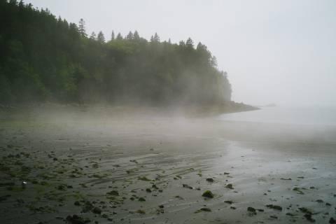 A photo of Rolling Fog Black Beach