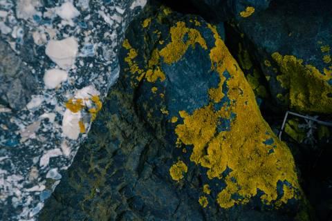 A photo of Rockface Texture Yellow Blue