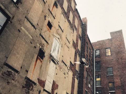 A photo of A bird flying in the snow against a building