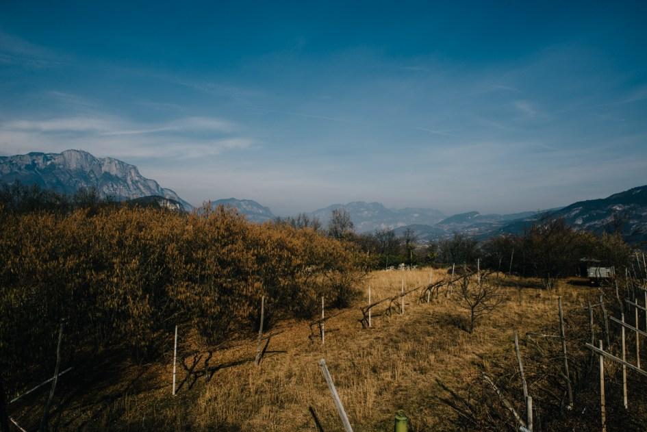 View from Sardagna.