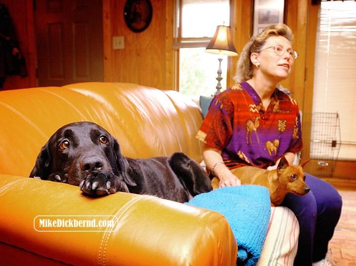 Dog show, 2004