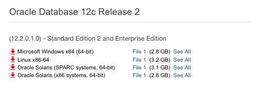 oracle database download 32 bit