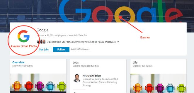 Social Media Branding | Google | LinkedIn | Mike D. O'Brien