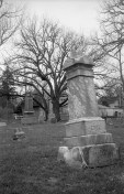 I like the composition of this vertical shot of the tilted tombstone in front of the craggly tree.