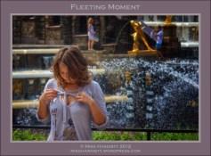 Fleeting Moment