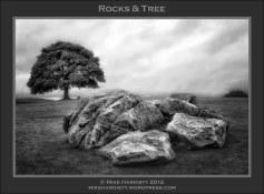 Rocks & Tree