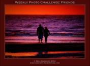 Weekly Photo Challenge: Friends
