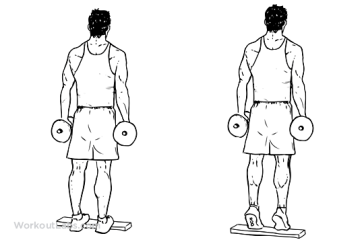 Standing_Dumbbell_Calf_Raise