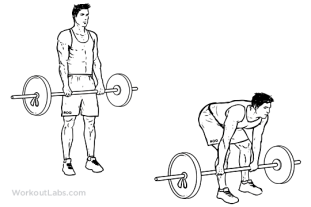 Stiff_Leg_Barbell_Deadlift