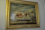 The Sheridan longhorn cattle