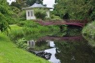 The Chinese House and Bridge