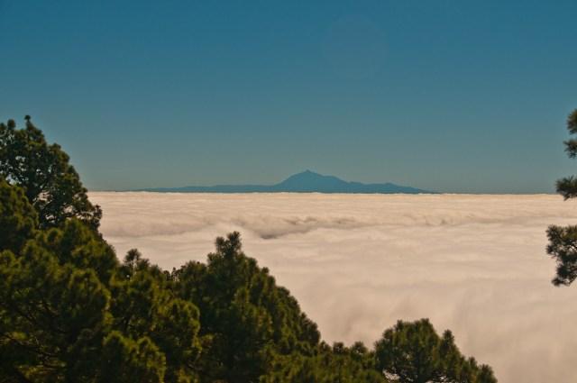 Znowu Teneryfa znad chmur. No jest to piękne. Jest.