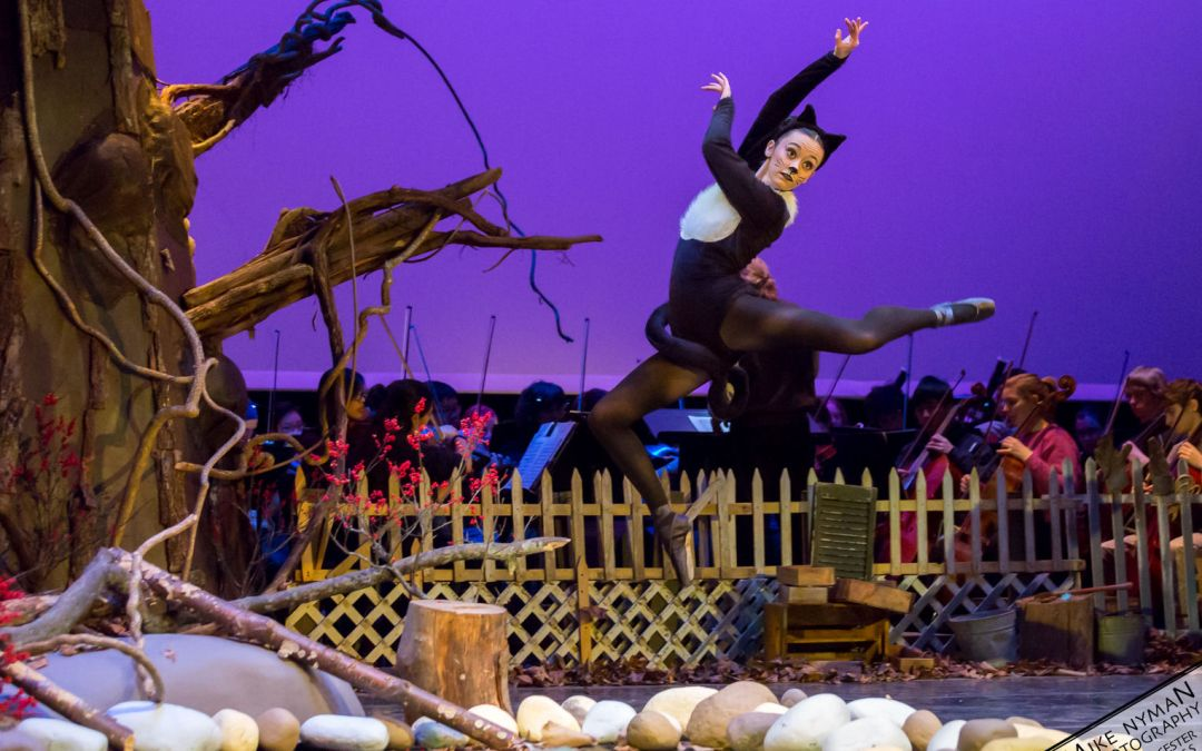 Peter and the Wolf – Ballet Arts Worcester
