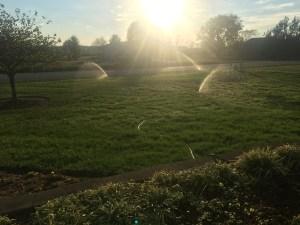 Custom Water Irrigation System