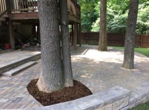 Patio Pavers around Trees with Mulch