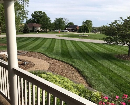 Freshly Cut Green Grass with Custom Landscaping