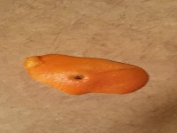 How to Make Orange and Lemon Marmalade