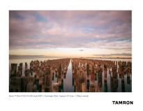 Tamron A037_Lavender_1