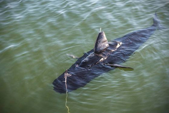 GhostSwimmer Unmanned Underwater Vehicle