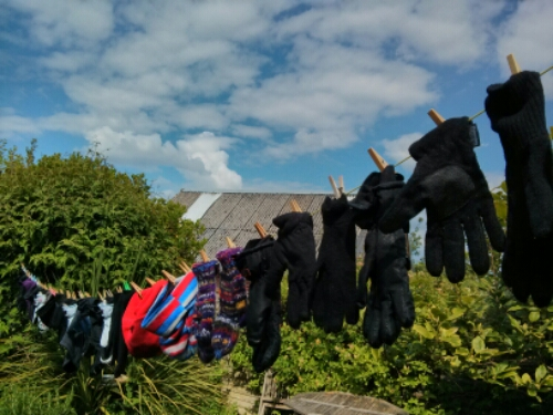Pic of the Day – Washday