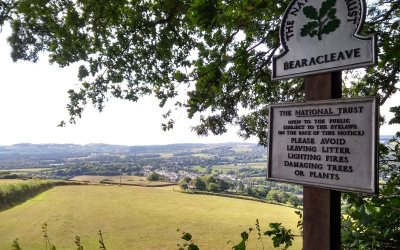 Featured Photo – View from Bearacleave Woodland