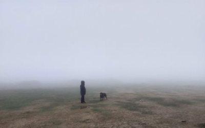 Featured Photo – Swirling Mists on Dartmoor