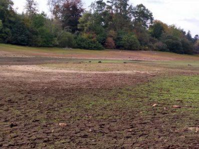 The mound revealed