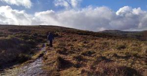 dartmoor down