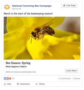 Facebook Ad (News Feed)