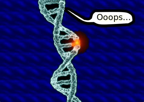 a DNA that says oops