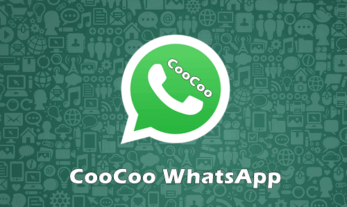 CooCoo WhatsApp Apk Download Versi Terbaru 2021 Anti Banned
