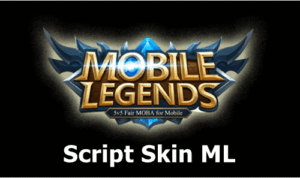 Script Skin ML Hero