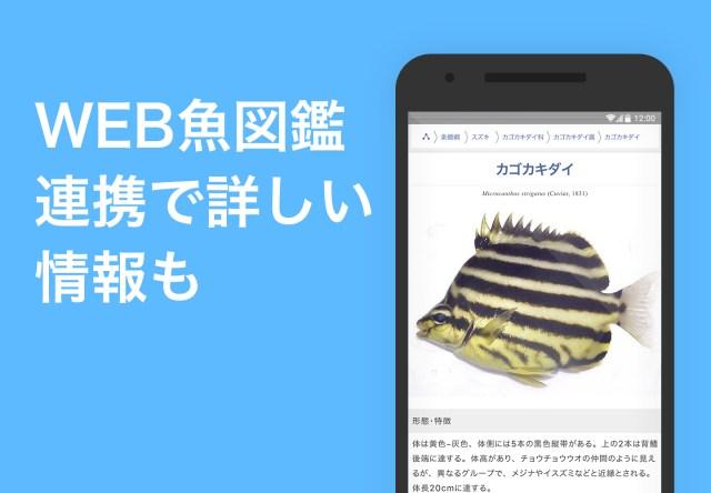 WEB魚図鑑連携で詳しい情報も