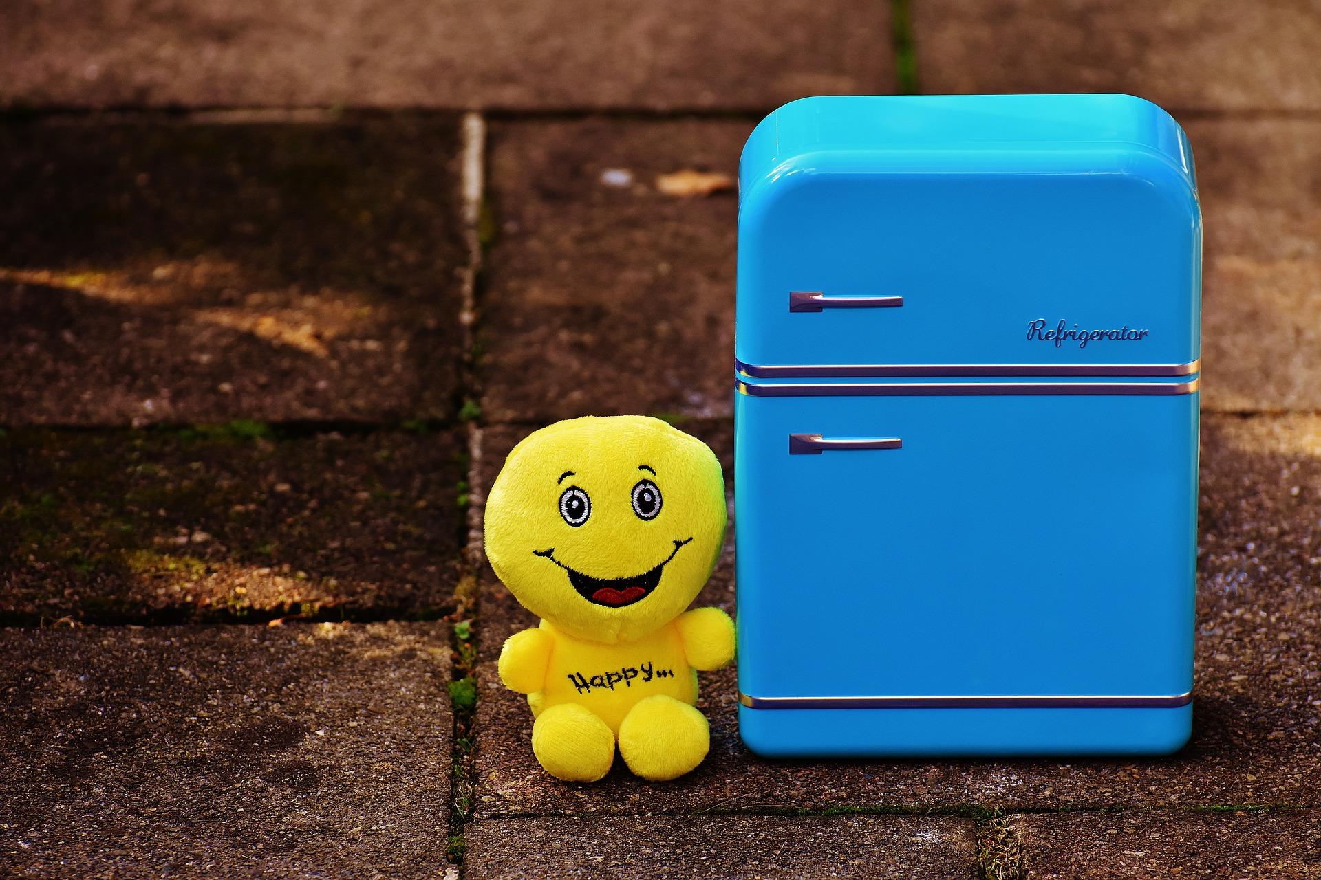 Kleiner Party Kühlschrank : Mikroben party im kühlschrank mikrobenzirkus