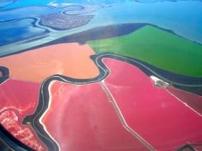 Luftaufnahme der Salzteiche in der Bucht von San Francisco. Halophile Mikroorganismen färben das salzhaltige Wasser rötlich. BIldquelle: CC BYA 3.0