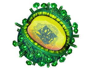 Influenza_Virus