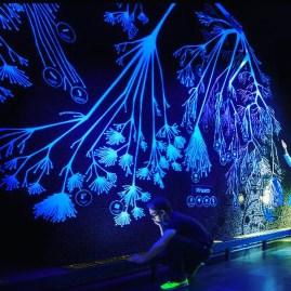 The Tree of Life: übr 1500 Spezies zeigt der beeindruckende baum des Lebens. Er wurde 2013 für Micropia errechnet aus der genetischen Information vom National Center for Biotechnology Information (Micropia)