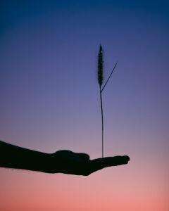 peamine on leida tasakaal