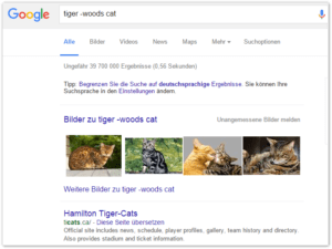 2016-01-11 01_02_04-tiger -woods cat - Google-Suche